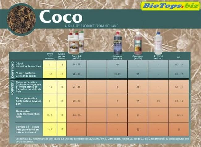 Plan de culture Coco - Canna