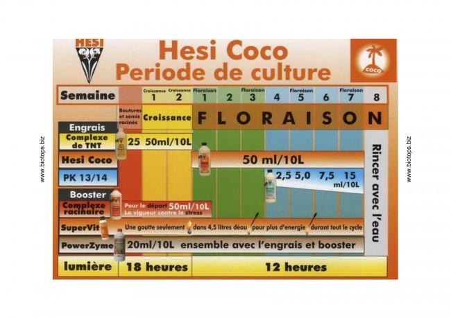 Plan de culture Coco - Hesi