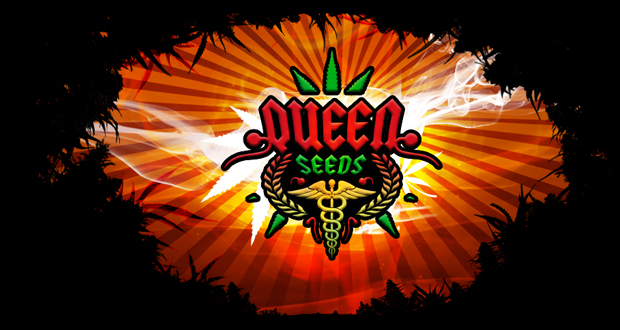 queenseeds