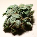 guidecannabis