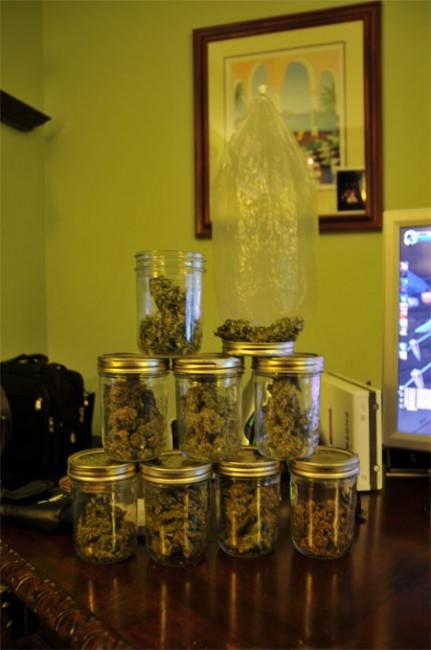 Conservation du cannabis après le curing