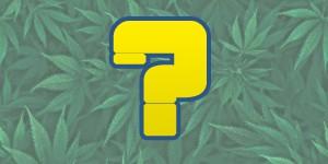 choisir ses graines de cannabis avec biotops.biz