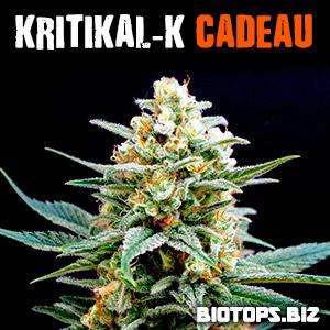 Kritikal-K est en vente chez biotops.biz
