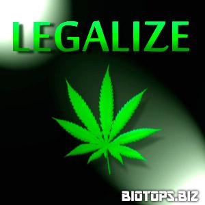 sortir de l'impasse sur le cannabis en France