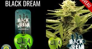 black dream disponible chez biotops.biz