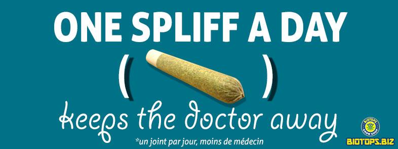 fumée du cannabis, pas nocif ?
