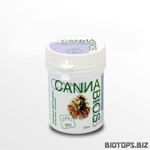 Cannabios Tea Tree et Romarin