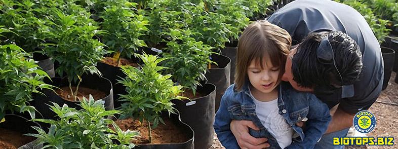 Cannabis médicinal Charlotte Figi a 6 ans