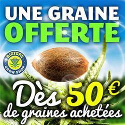 promo 1 graine offerte tous les 50€
