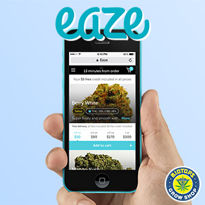 Application cannabis Eaze