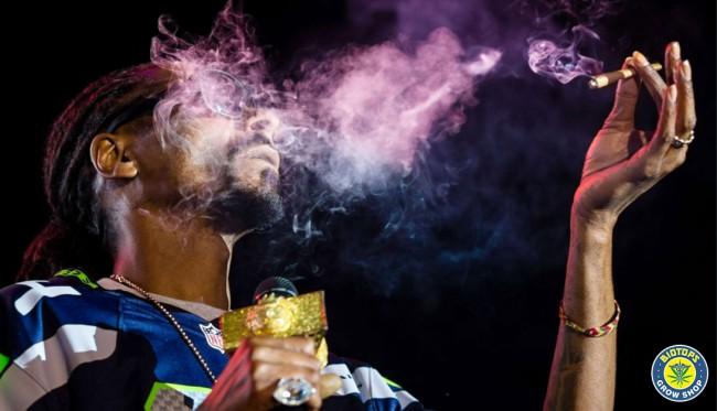 Snoop Dogg. Grand militant de la consommation et de la légalisation de cannabis
