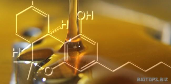 huile de cannabis BHO