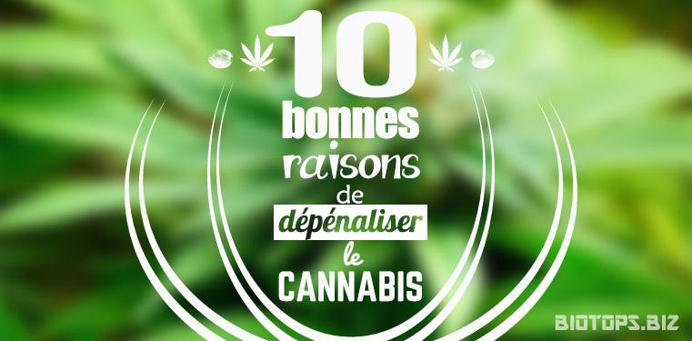 10 bonnes raisons de legaliser le cannabis