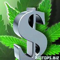 Le cannabis légal génère de l'argent