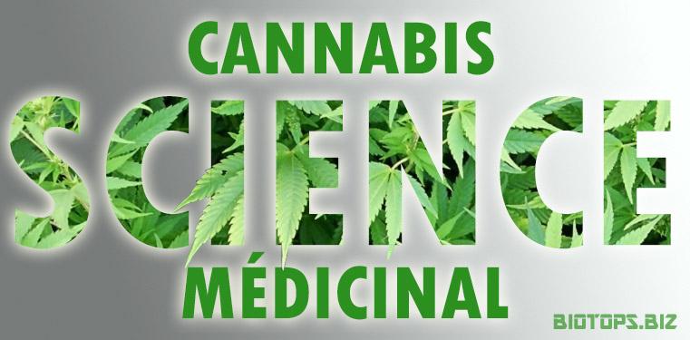 Science et cannabis médicinal