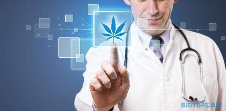 Les cannabinoïdes principaux