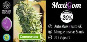 MaxiGom en promo chez Biotops.BIZ