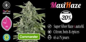 MaxiHaze en promo chez Biotops.BIZ