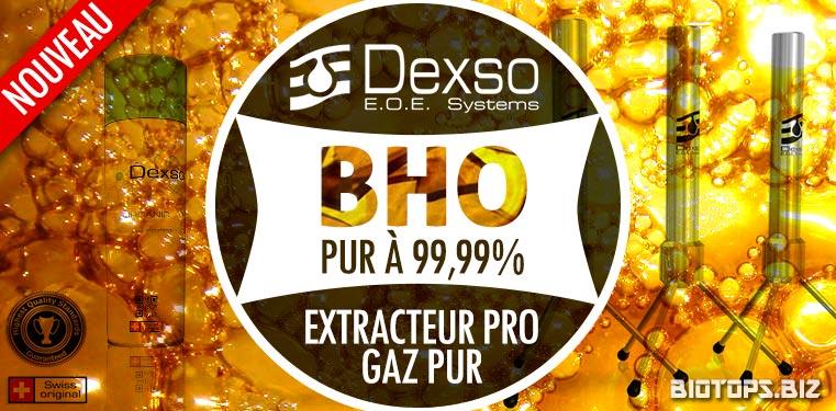 Dexso, extracteur BHO qualité professionnelle