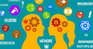 Les effets du cannabis sur la mémoire