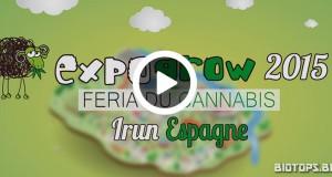 Expogrow 2015, 4 édition du salon du cannabis d'Irun (Espagne)