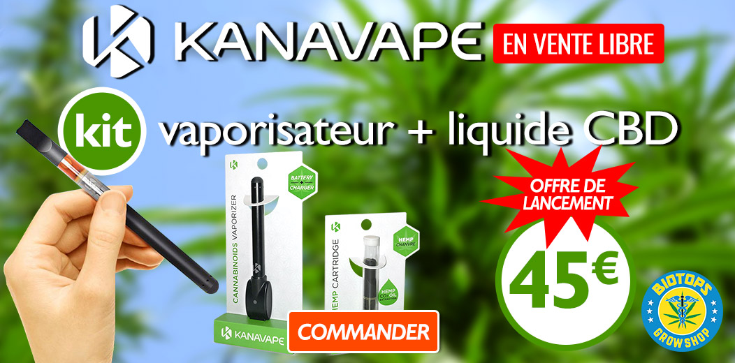 Kanavape kit vaporisateur + liquide 45 € seulement
