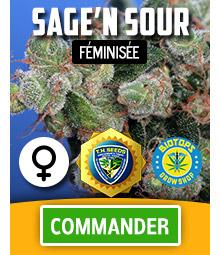 Sage'n Sour graine de cannabis feminisee