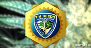 T.H. Seeds, banque de graines de cannabis hollandaise