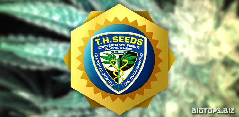T.H. Seeds, banque de graines de cannabis hollandaise