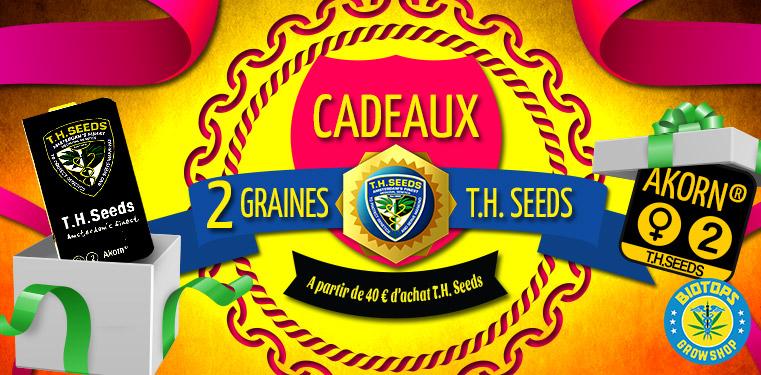 2 graines Akorn de T.H. Seeds cadeau chez Biotops.BIZ