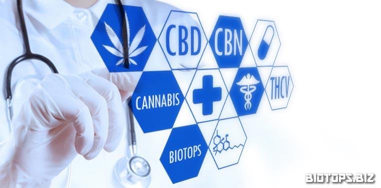 Cannabis : l'avenir de la médecine