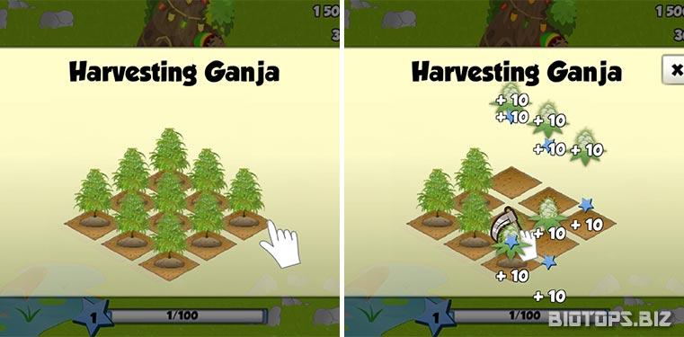Didacticiel Ganja Farmer
