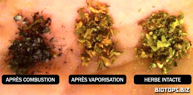 Effets des vaporisateurs de cannabiset combution du cannabis
