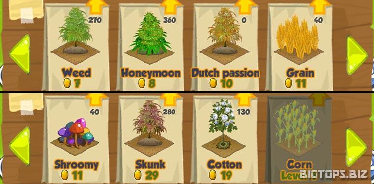 Ganja Farmer, les sortes de cannabis
