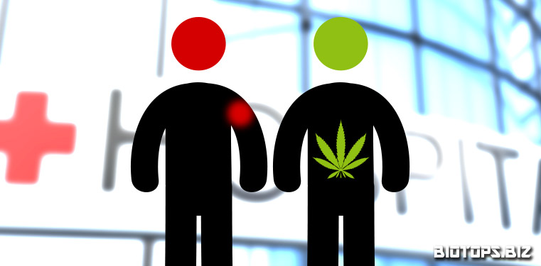 Le cannabis n'est pas dangereux pour la santé