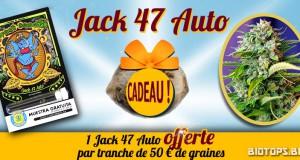 Jack 47 Auto de Sweet Seeds en cadeau avec Biotops.BIZ