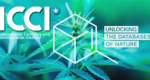 centre d'étude du cannabis prague