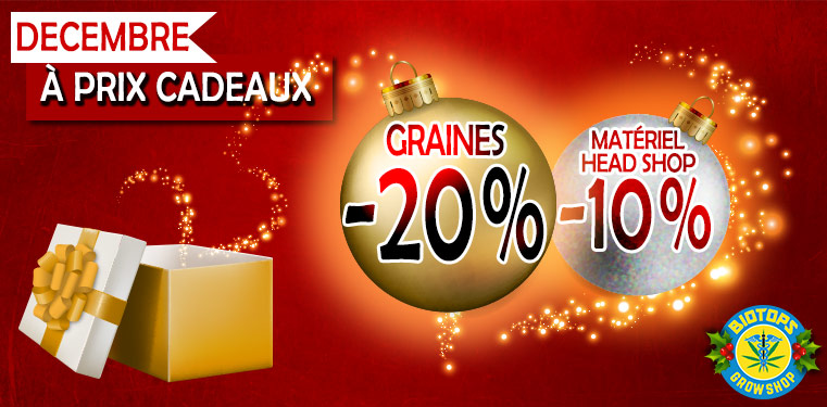 Décembre à prix cadeaux chez Biotops.BIZ - 20 % sur les graines / - 10 % sur le matériel et le head shop