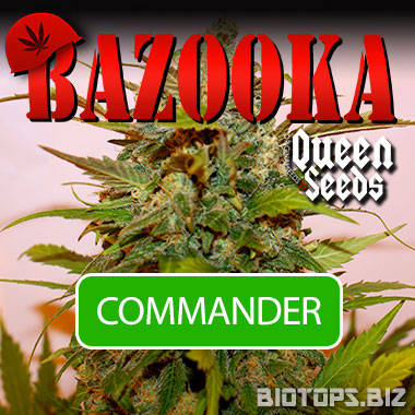 Cliquez pour commander la bazooka