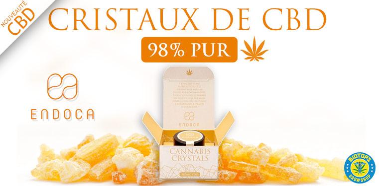 Cristal Cannabis