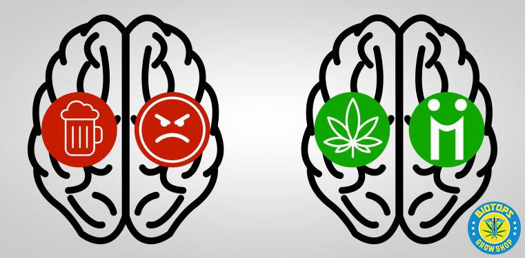 alcool vs cannabis
