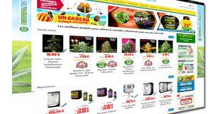 Acheter vos graines de cannabis en ligne chez biotops.biz