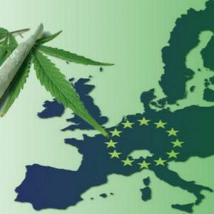 législation sur le cannabis