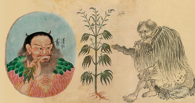 l'Empereur Shen Nung père de la médecine chinoise
