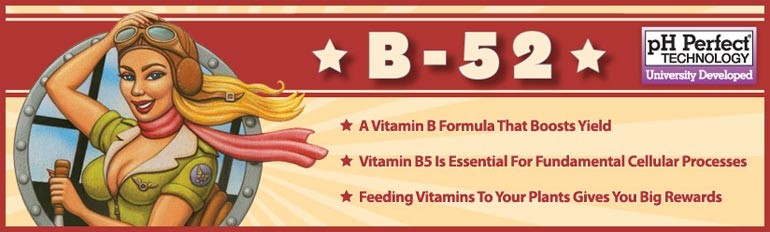 B-52 Advanced Nutrients