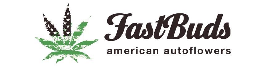Fast Bud's