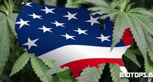 décriminalisation du cannabis dans l'illinois