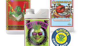 pack Bud Ignitor